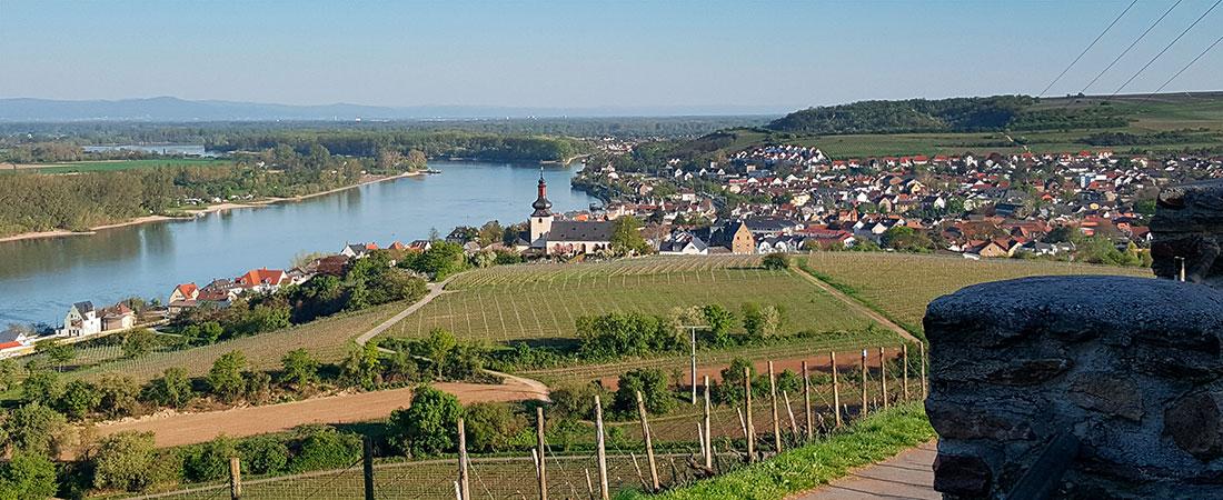 Nierstein am Rhein